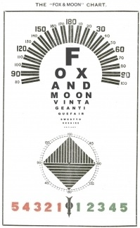 FOX & MOON TAKE A CLOSER LOOK